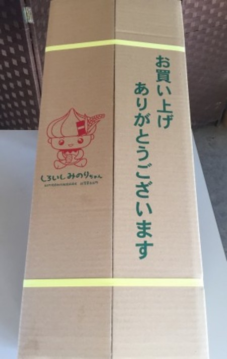 白石レンコン (蓮恋4kg 2L・L)