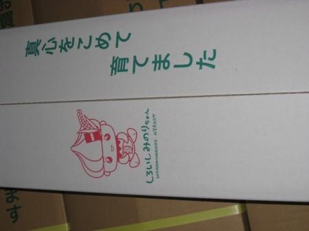 白石レンコン (蓮恋 3kg 2L・L )